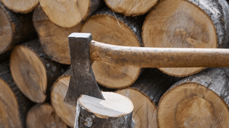 Hatchets For Woodworkers
