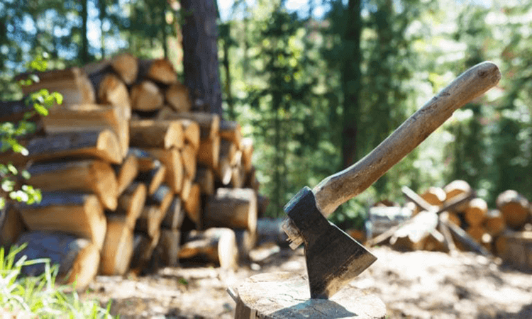 How To Split Wood With An Axe A Chopping Guide
