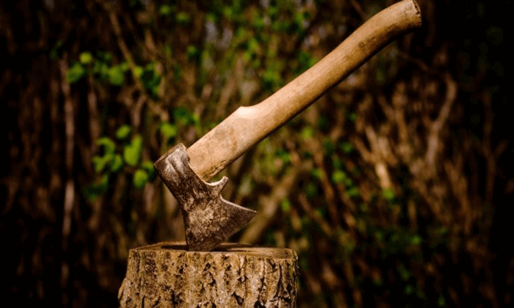 How To Split Wood Without Axe In Different Ways