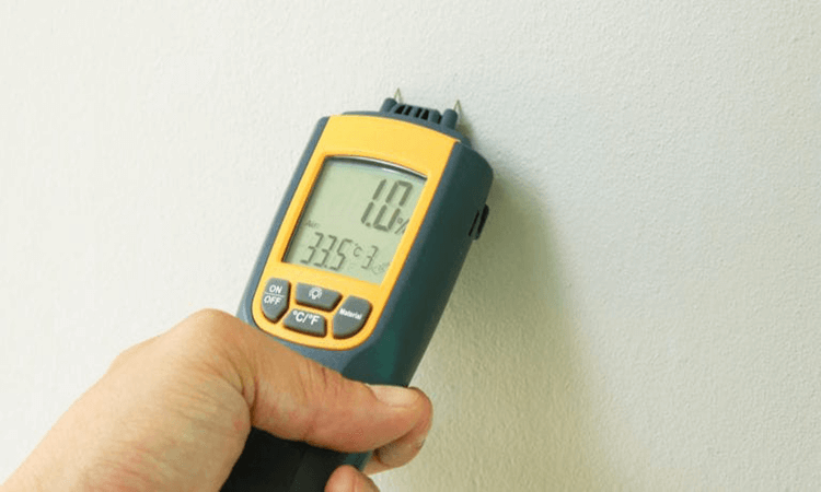 The 7 Best Moisture Meters