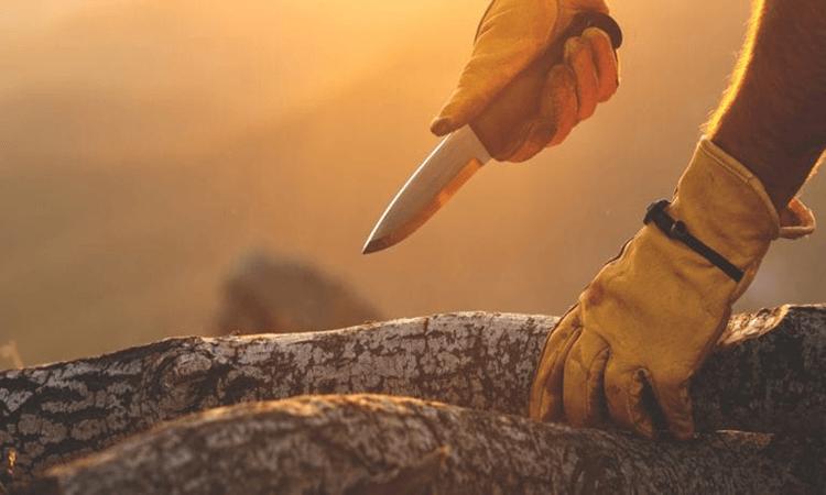 The 7 Best Pocket Knives For Whittling Wood