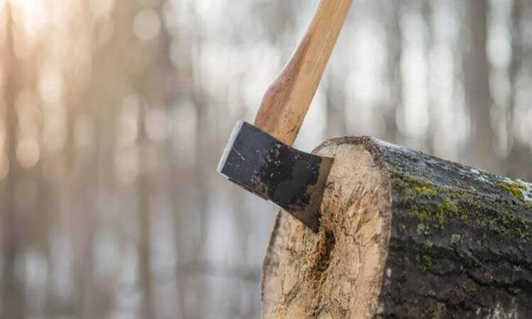 The 7 Best Wood Cutting Axes